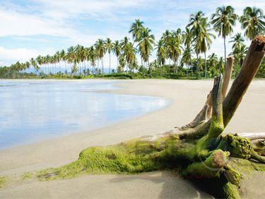 巴厘岛库塔区是游客最喜欢的地点之一