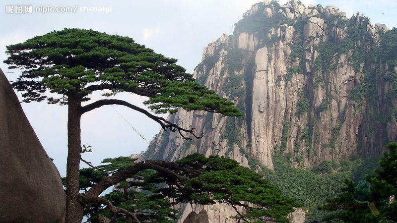 行程安排 d1:新昌--黄山        15日上午10时抵达黄山风景区南大门