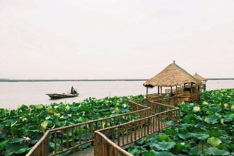 11月3号苏州阳澄湖品蟹,美食观光一日游160元
