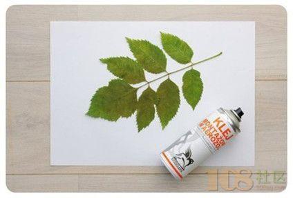 把树叶放在木板上,压平